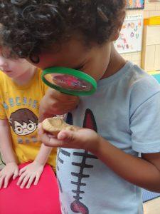 Preschool (3)